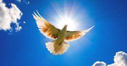 preghiere di perdono e pace